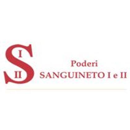 Immagine per il produttore Sanguineto