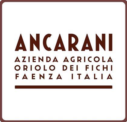 Immagine per il produttore Ancarani