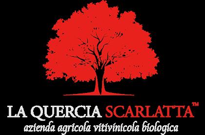 Immagine per il produttore La Quercia Scarlatta